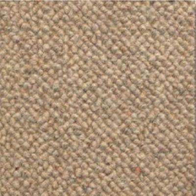 cool carpets torquay