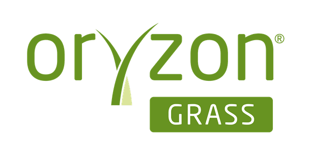 oryzon artificial grass