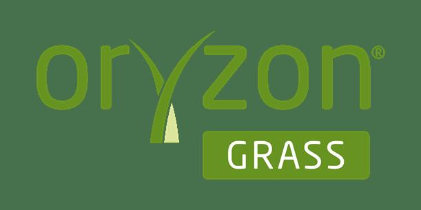oryzon artificial grass